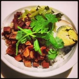 Yummy Braised Minced Pork Rice (魯肉飯)