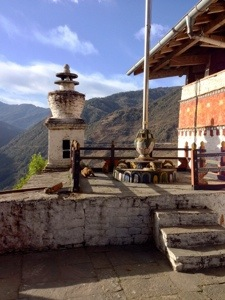 Monkeys roam around freely in the dzong