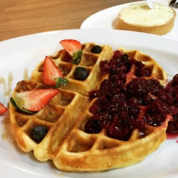 Waffle with Summer Berries