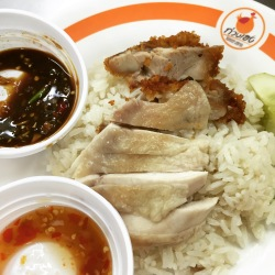 Boiled Chicken and Fried Chicken with Rice