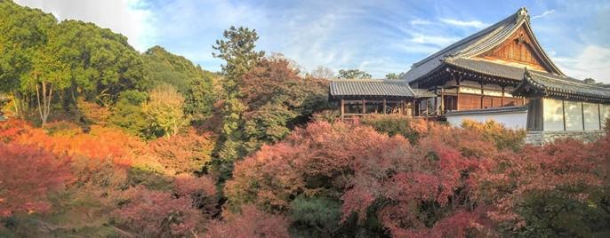 cropped-kyoto.jpg