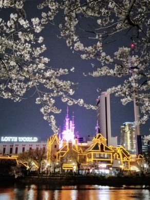 LotteWorld in the night
