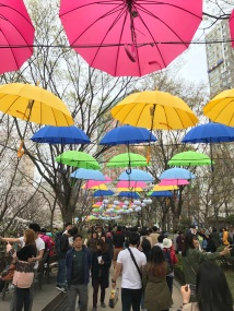 And colourful umbrellas