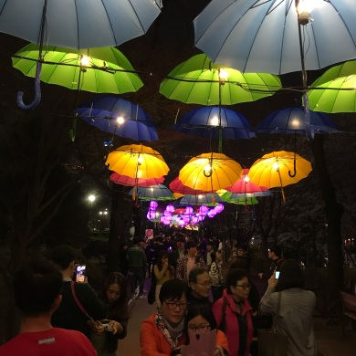 Umbrellas lit up