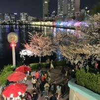 Street food amidst cherry blossom